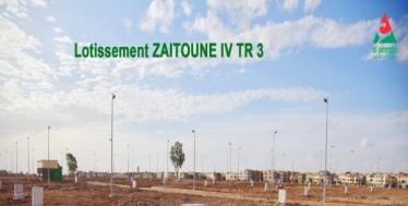 ZAITOUNE IV TR 3